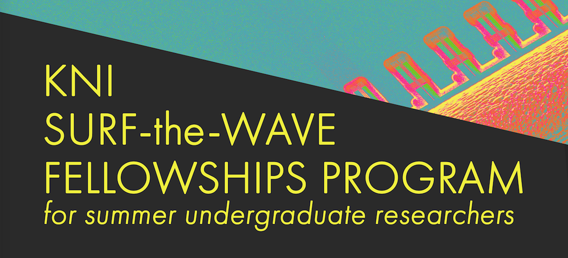 KNI SURF-the-WAVE fellowships image header